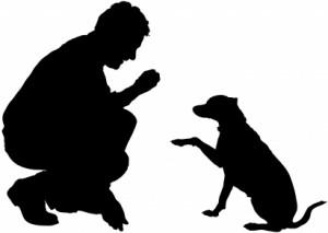 dresseur de chiens